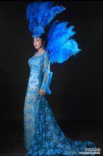 著名歌手紫洛蓝的音乐成绩
